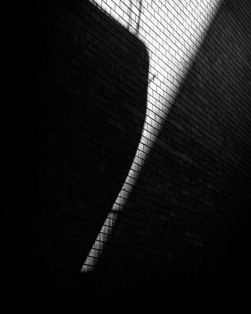 Creeping-Shadows-VI_84A9401-2