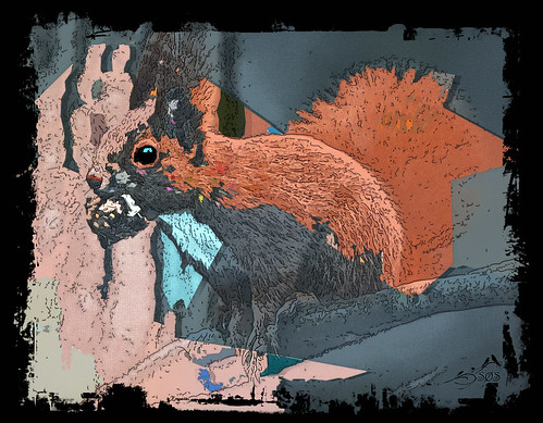 IMGL5766  Eurasian Red Squirrel Artistic