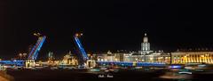 The Palace Bridge (San Petersburgo, Rusia)