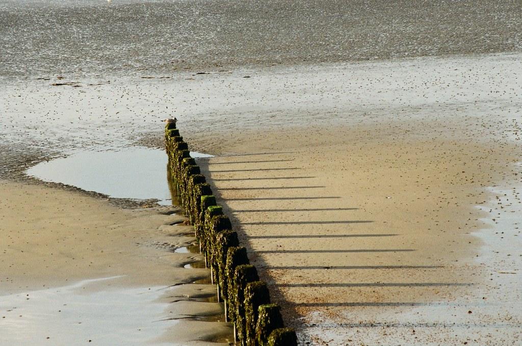 Shadow Bognor Regis, West Sussex UK