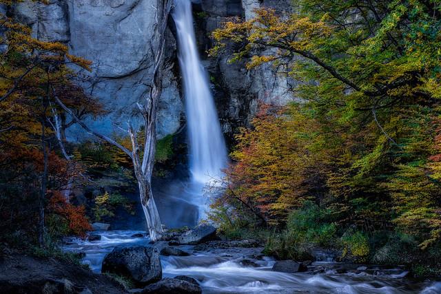 Patagonia Flow