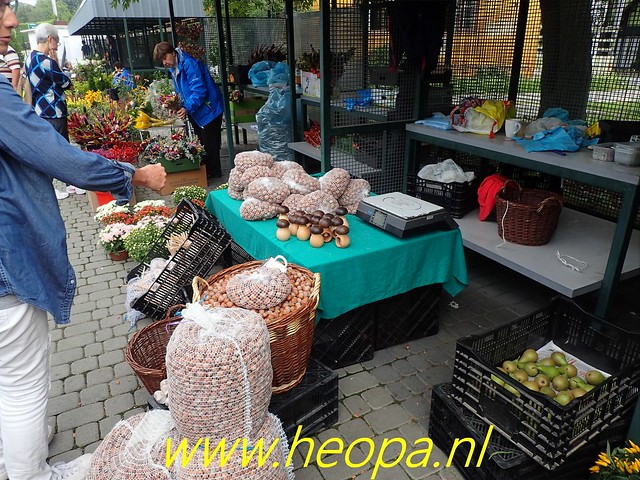 2019-09-07           In Cieszyn naar de markt (5)