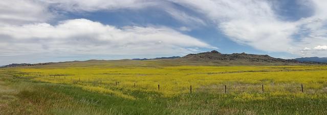 North-west Montana - IMG_5711a-12a