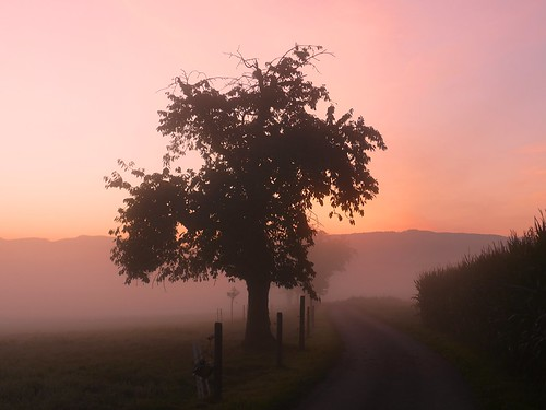 sunrise sonnenaufgang lever du salida del sol soleil martinus6 martinus6xy martinus martinusvi hillside herbst automne autumn autunno y190914
