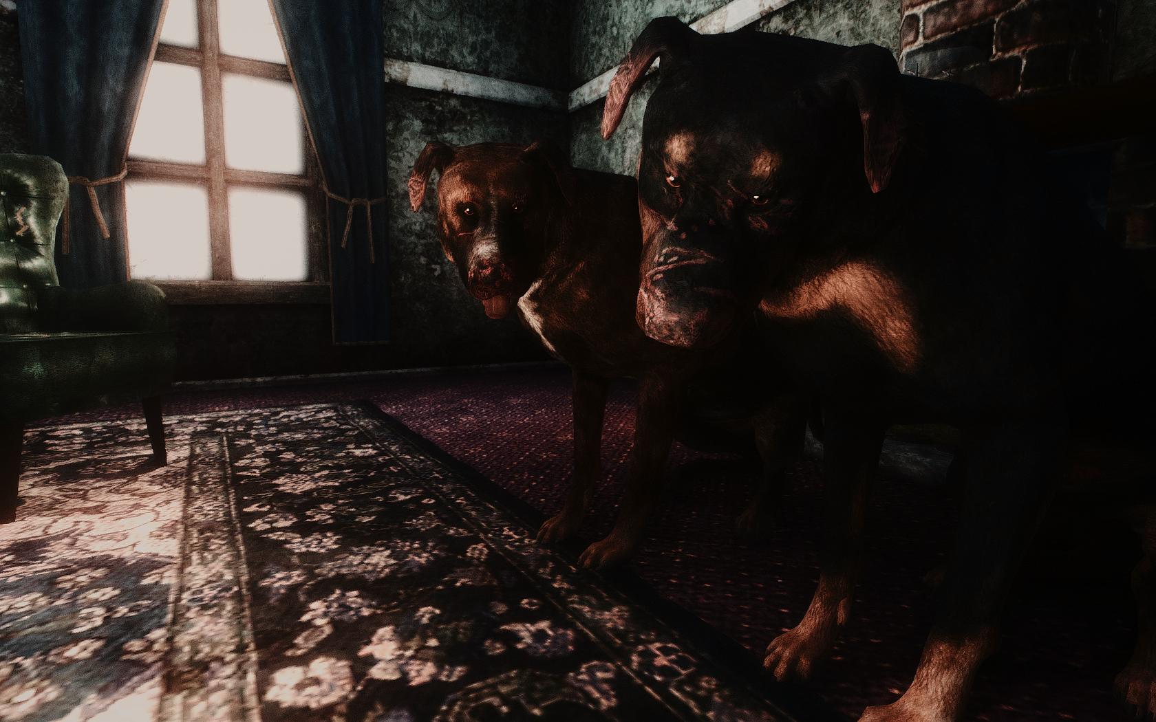 Fallout Screenshots XIV - Page 2 48733749818_8f13d07e46_o