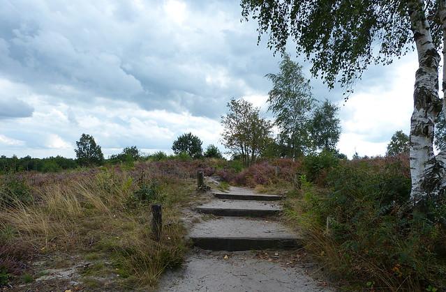 Nature area Tonnenberg near Heerde