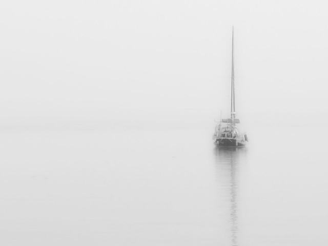 brouillard perpétuel
