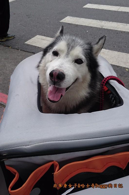 Doggy輔具04-5
