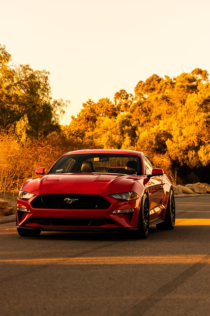 2019 Ford Mustang Gt PP