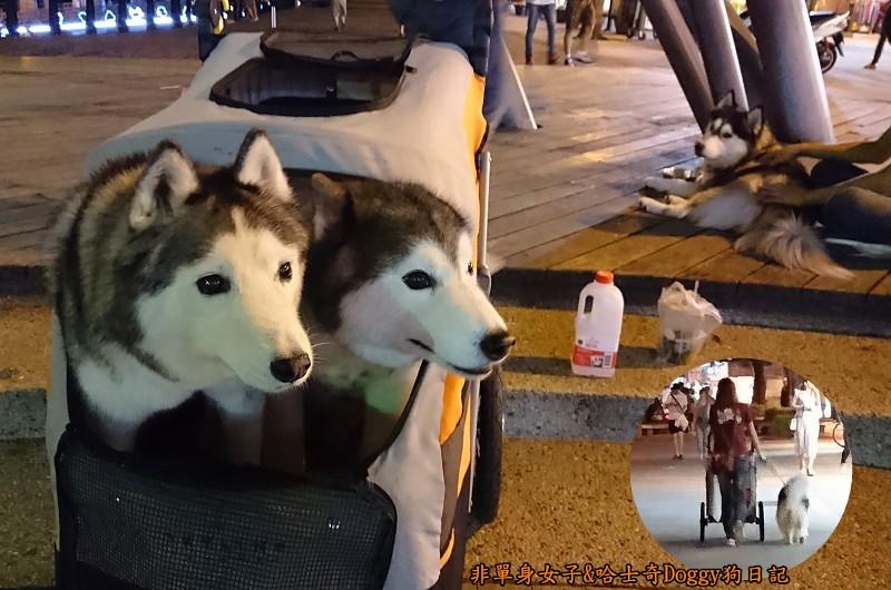 Doggy輔具04-7