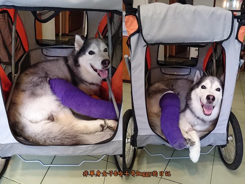 Doggy輔具00推車