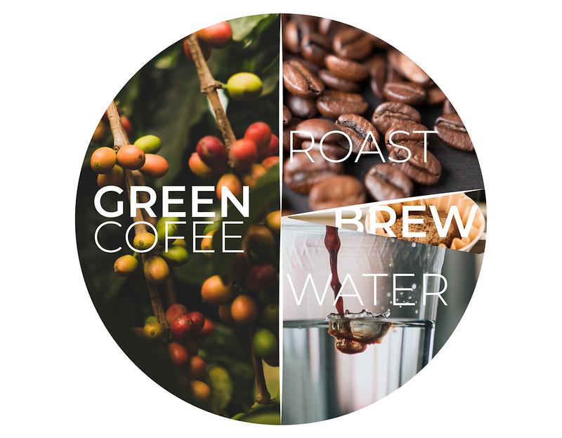 Tiềm năng hương vị và chất lượng cà phê PrimeCoffee