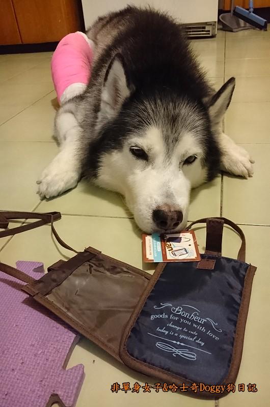 Doggy輔具07-1