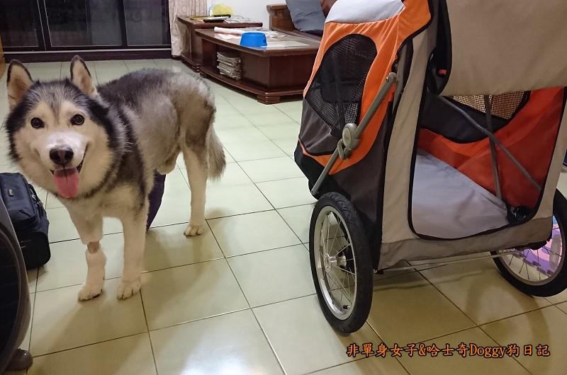 Doggy輔具04-3