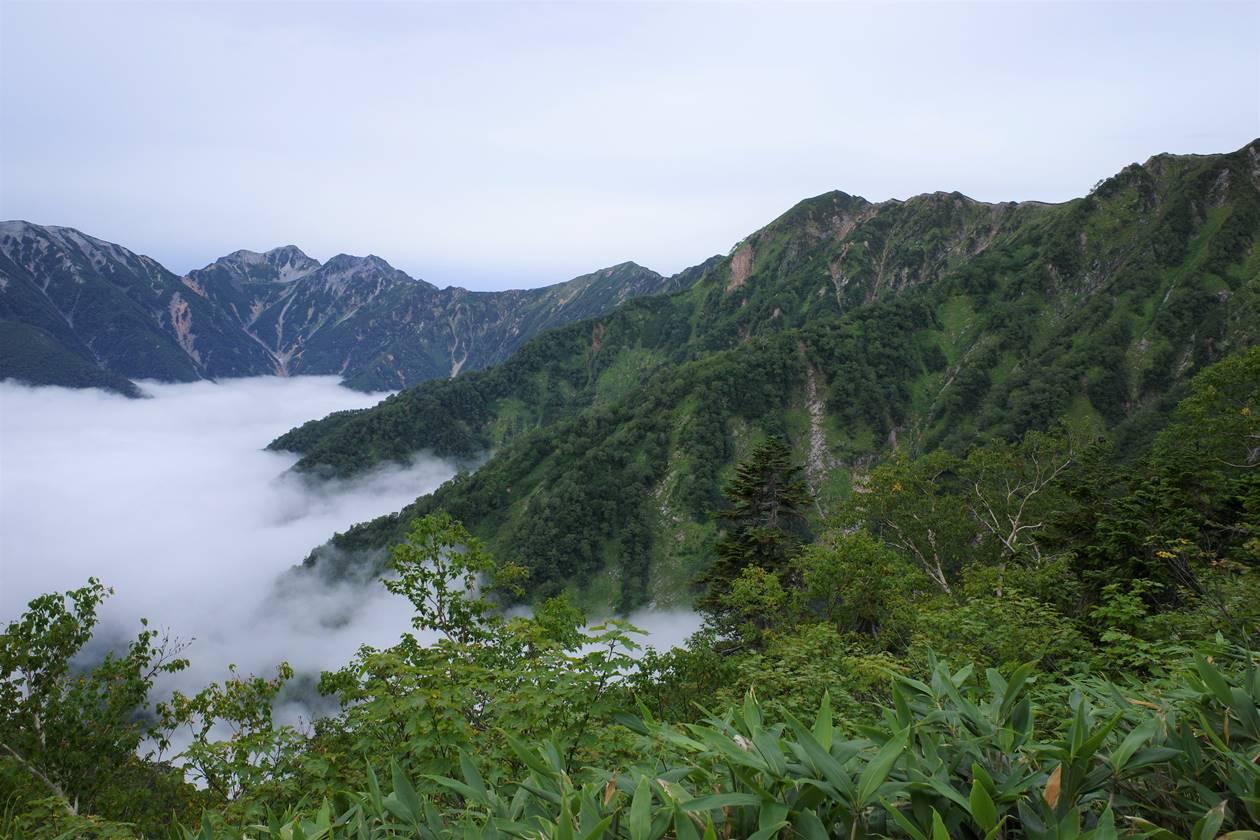 針ノ木岳と蓮華岳と雲海