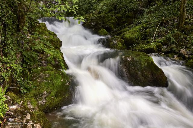 Potok Gerovčica neposredno ispod izvora