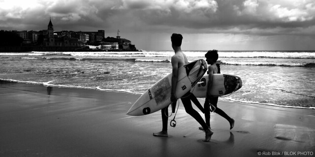 Surf Friends-BP81291bw-panorama