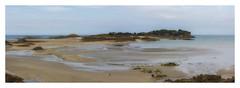 Les Ebihens à marée basse..