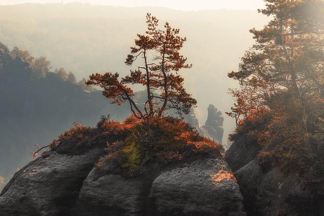 the golden autumn - Herbstgedanken