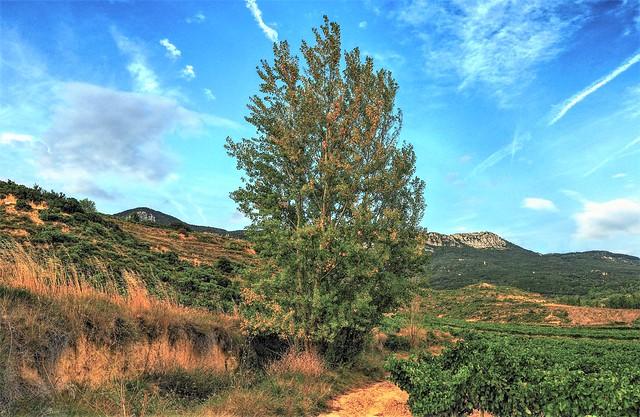 Abalos. La Rioja.