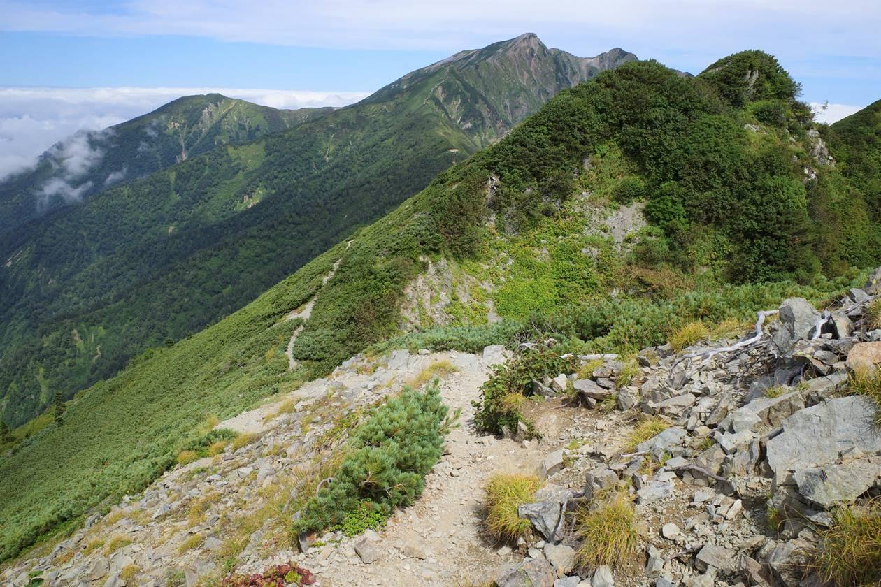 爺ヶ岳から冷池山荘までの下り道