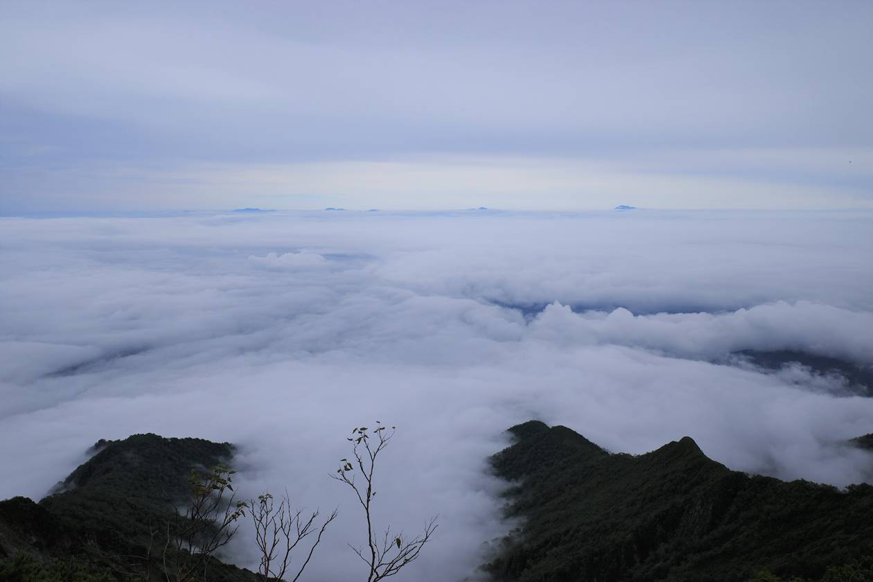 爺ヶ岳の東側に広がる雲海