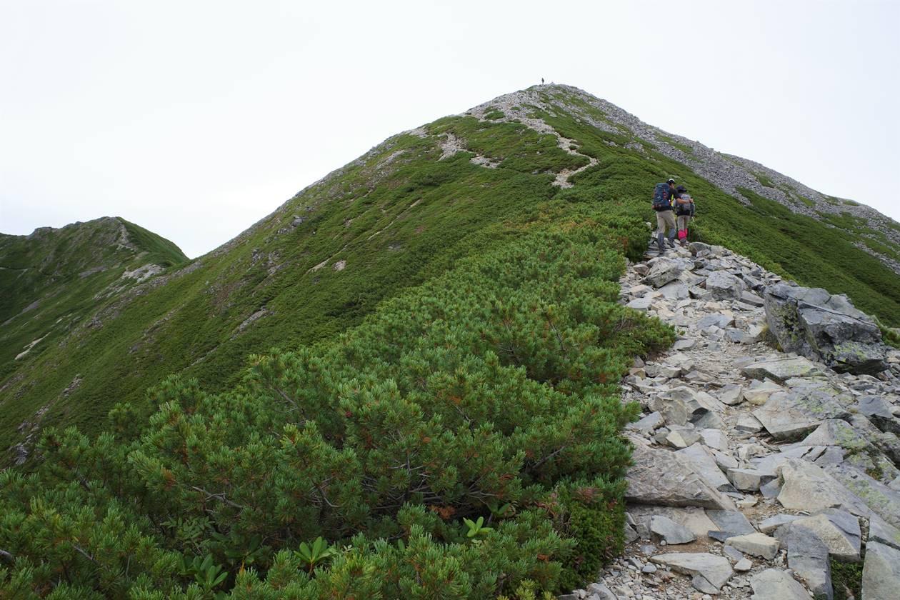 爺ヶ岳(南峰)
