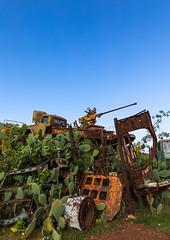 Military tank graveyard, Central region, Asmara, Eritrea