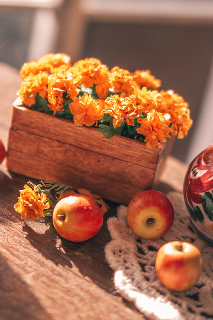 Marigold and apples