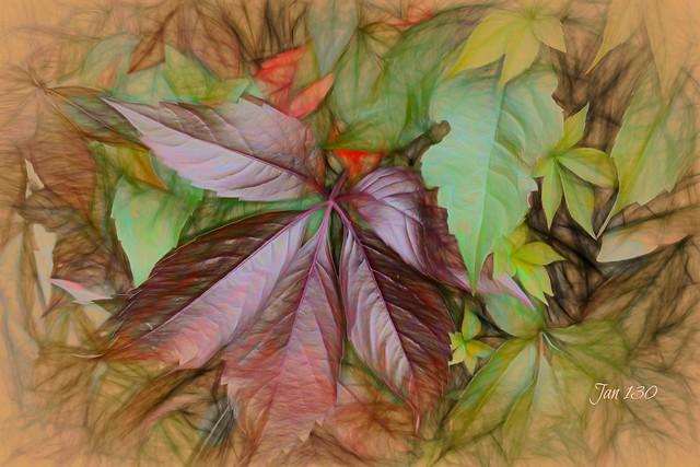 Impressions of Autumn