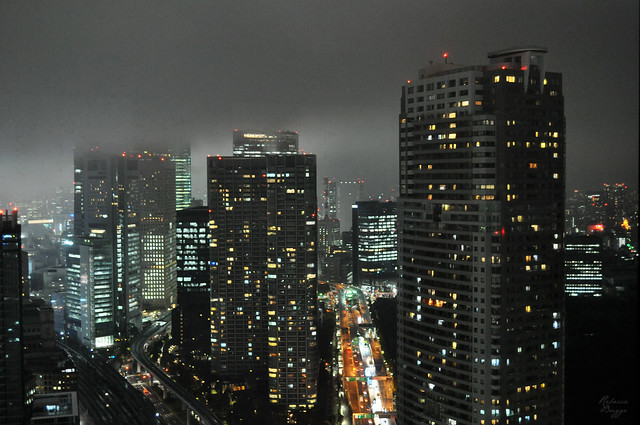Tokyo in fog