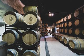 Quinta do Sao Bernardo Winery