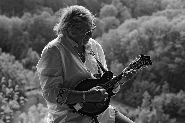 The Mandolin | Bluegrass