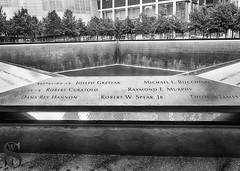 1 The memorial pool