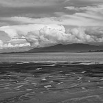 10. September 2019 - 13:37 - Shores of Padilla Bay at Low Tide in black and white