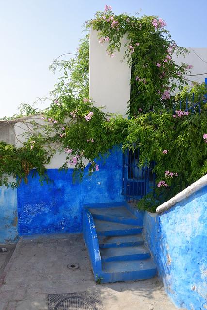 Kasbah des Oudaïas... Rabat - Maroc