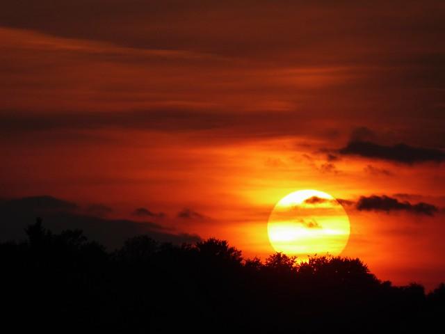 P1150665 Sunset / Sonnenuntergang