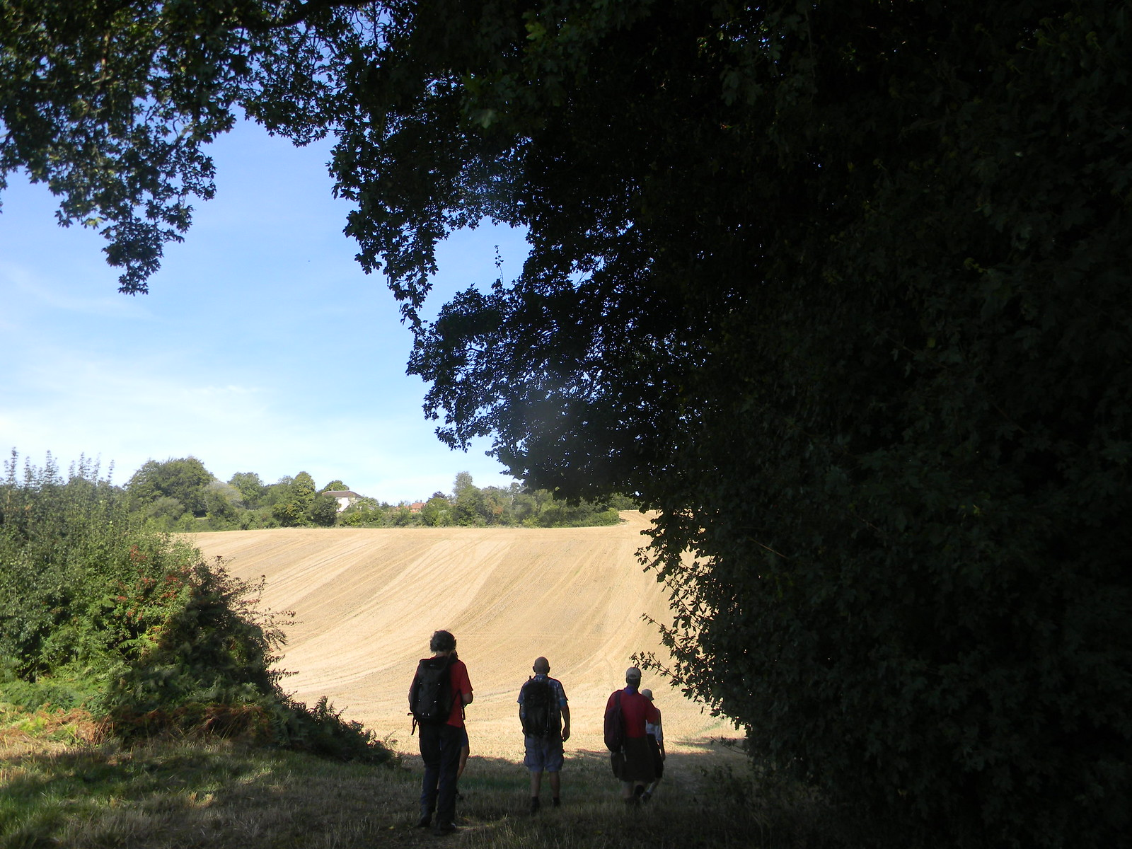 At the big field Chesham Circular