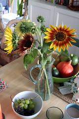 Sunflower still
