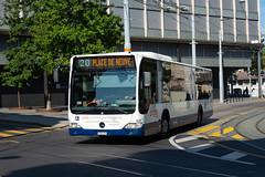 TPG Bus Mercedes Citaro O503G 526
