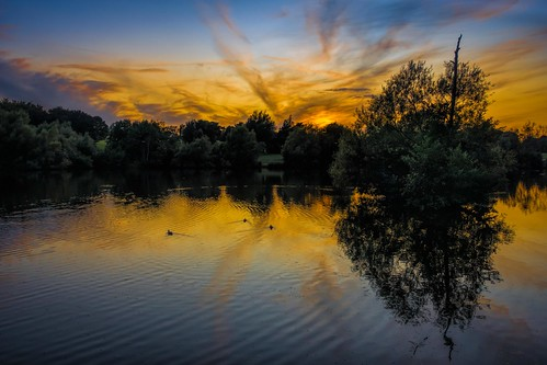 summer tree sunset ducks water reflections sonyrx100m3 maidstone lake kent motepark clouds england
