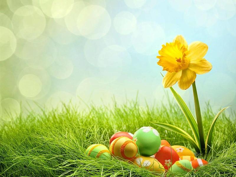 Húsvéti előkészületek 2019