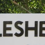 Pleshey Half Marathon 2019