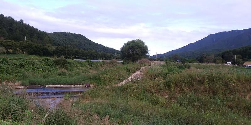 이른 아침 작은새들 노랫소리 들려오는 가을아침의 산책길 풍경들