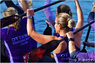 Ottawa Dragon Boat Club
