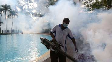 9,703 dengue cases in Johor since January