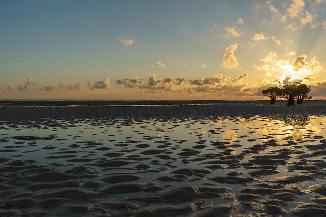 Sumba. Golden sunrise with