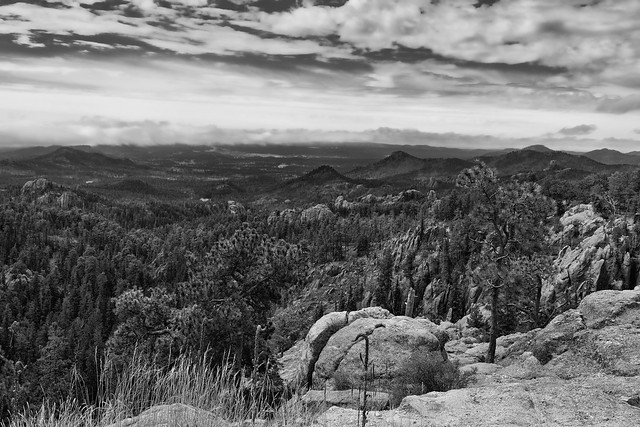 Hilltops, Forest and Mountains That Stretch to the Far off Horizon (Black & White, Custer State Park)