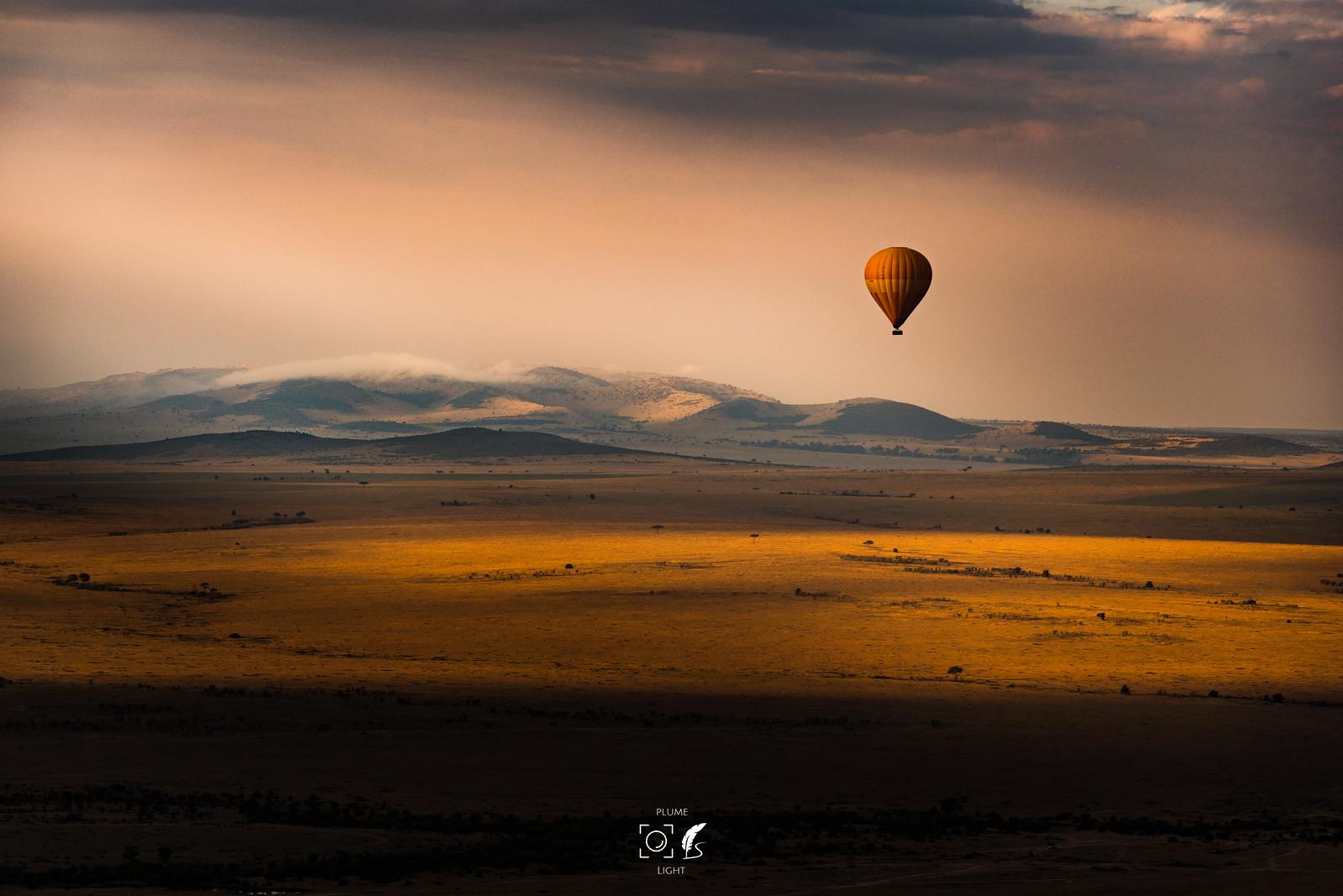金色馬賽│Masai Mara National Park│Kenya