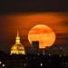 Entre les Invalides et Notre Dame 🌖